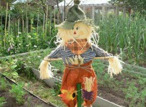 Как сделать огородное чучело