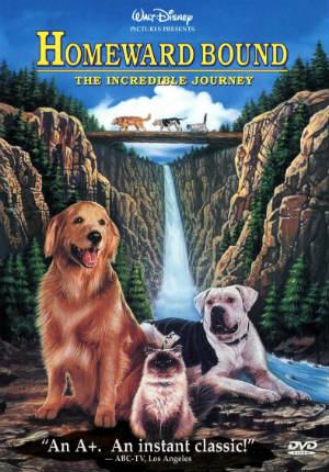 Дорога домой: Невероятное путешествие (1993)