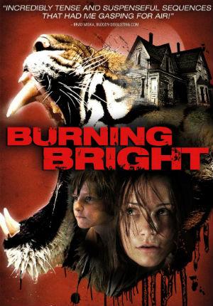 Во власти тигра (2010)