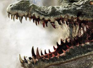 Лучшие фильмы ужасов про крокодилов убийц