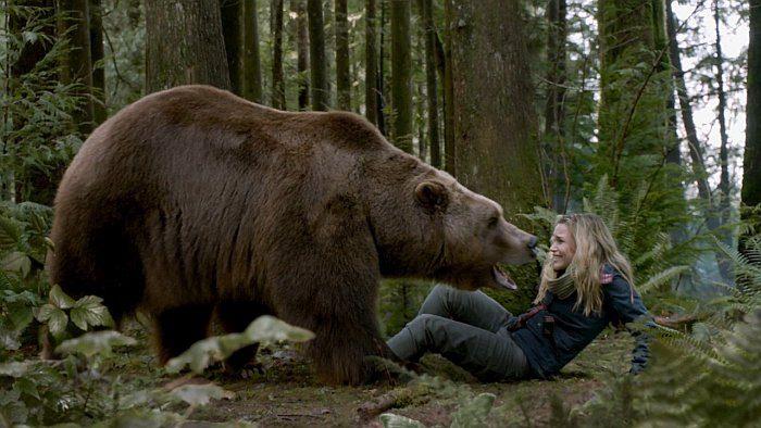 Список топ 10 лучших фильмов про медведя людоеда