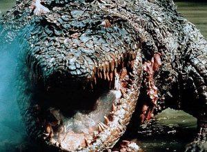Фильмы Крокодил-убийца