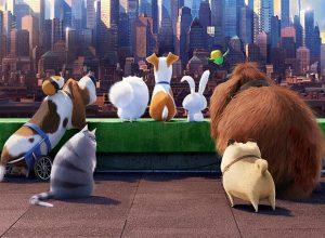 Мультфильмы Тайная жизнь домашних животных