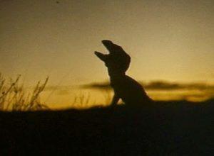 Фильмы Эксперимент «Карнозавр»