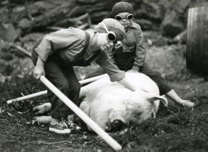 Фильмы ужасов про карликов
