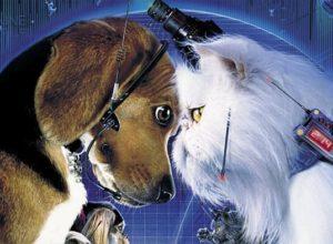 Фильмы Кошки против собак