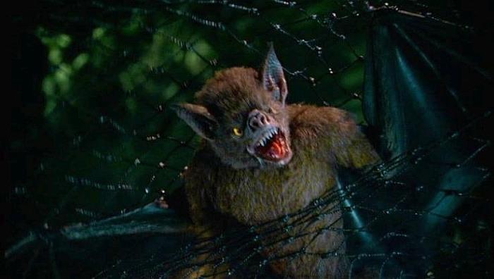 Фильмы ужасов про летучих мышей убийц