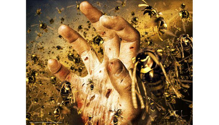 Фильмы ужасов про ос и пчел убийц