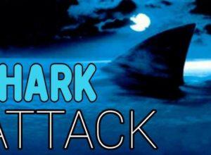 Фильмы Акулы (Shark Attack)