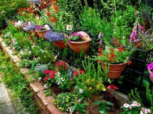 Как украсить дачу цветами