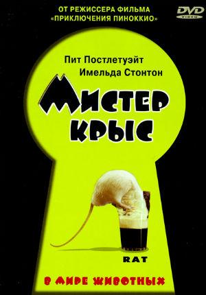 Мистер крыс (2000)