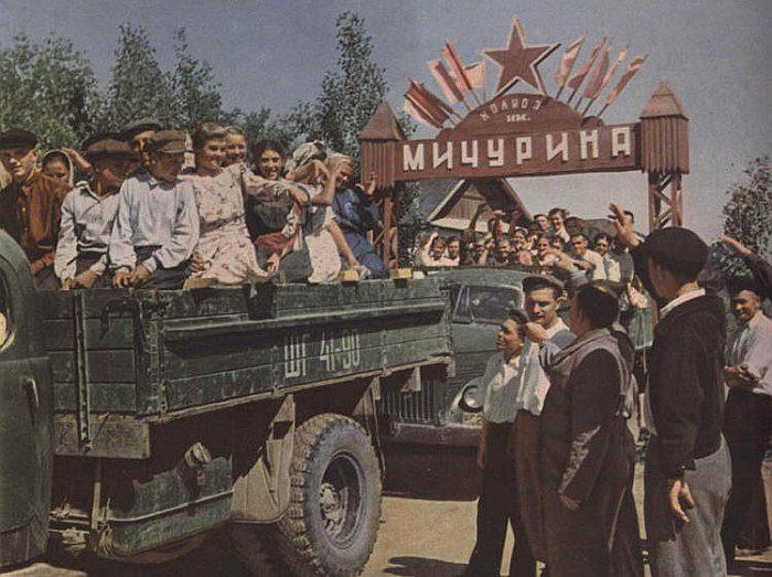 Список топ 10 лучших советских фильмов про колхоз
