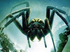 Список топ 10 лучших фильмов ужасов про пауков