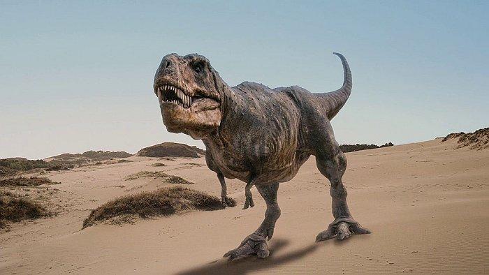 Список 10 лучших документальных фильмов про динозавров